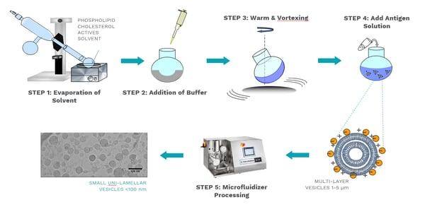 LNP production steps
