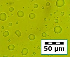 nanoencapsulation-a