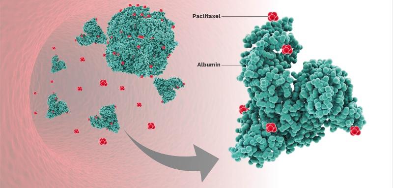 albumin-paclitaxel-blog-size